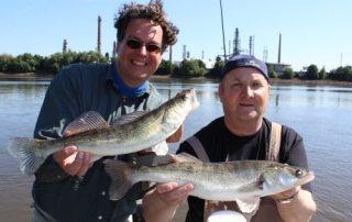 Zandertouren laufen sehr gut – Fishing-Masters-Show 2013
