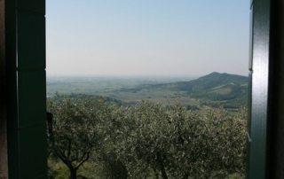 Padua-Trip