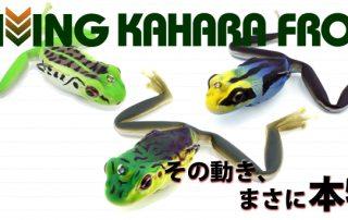 Endlich eingetroffen - Kahara DIVING FROG