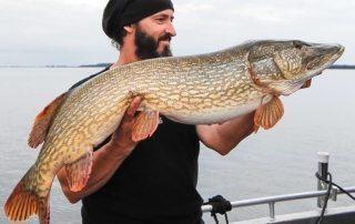Starker Temperaturabfall von Luft und Wasser sorgt für wechselnde Fangbedingungen auf Bodden und Strelasund